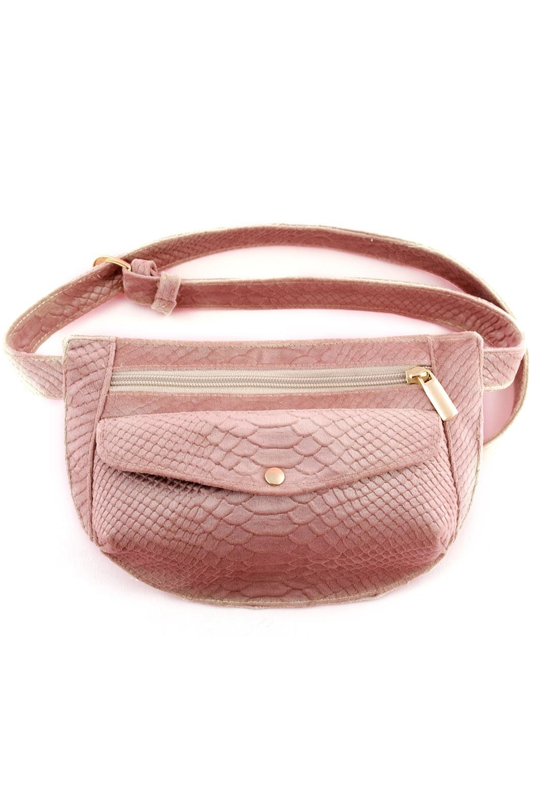Disenia Pink Fanny Bag - Front Cropped Image