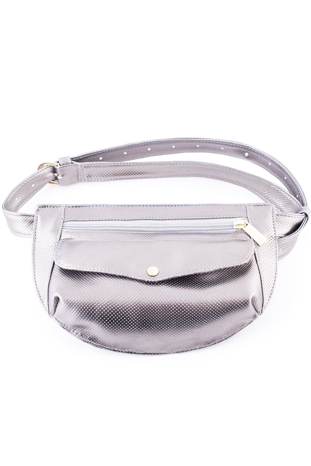 Disenia Silver Fanny Bag - Front Cropped Image