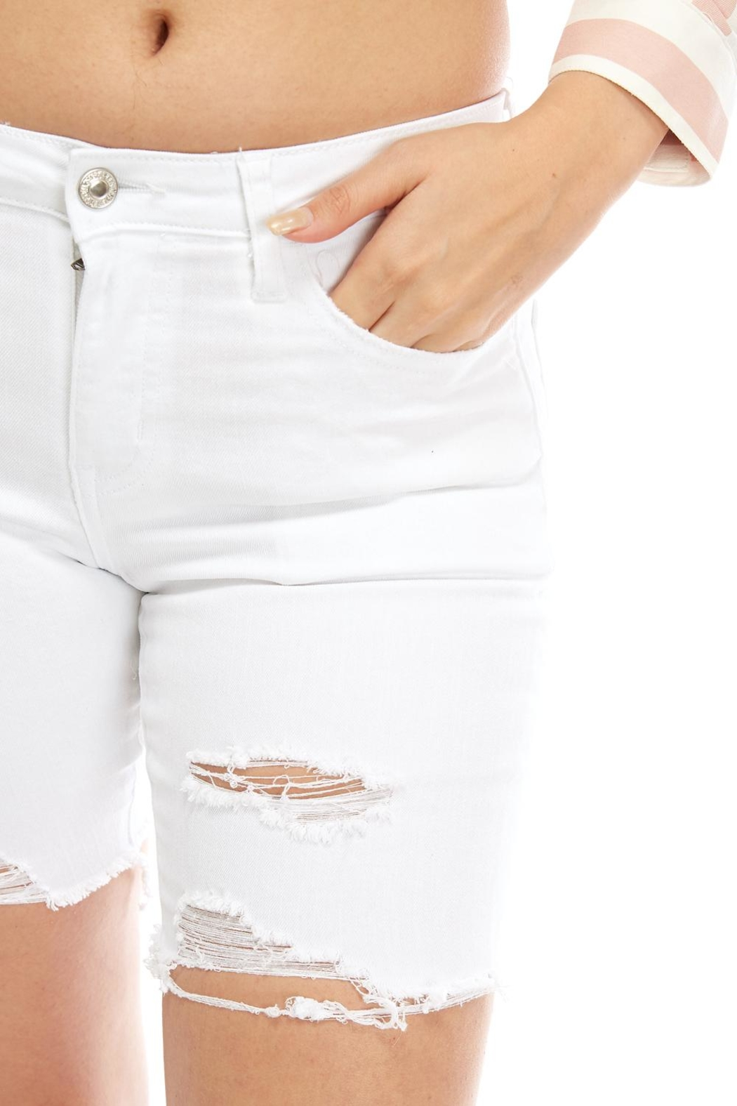 Vervet Distressed Bermuda Shorts - Back Cropped Image