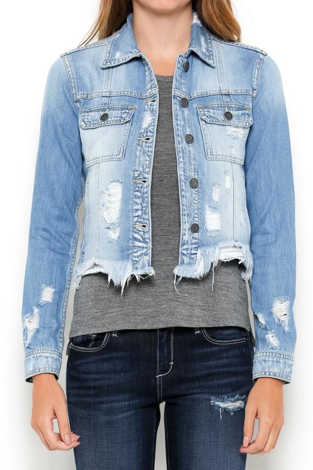 Hidden Jeans Distressed Jean Jacket - Front Full Image