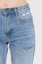 English Factory Distressed Mom Jean - Other