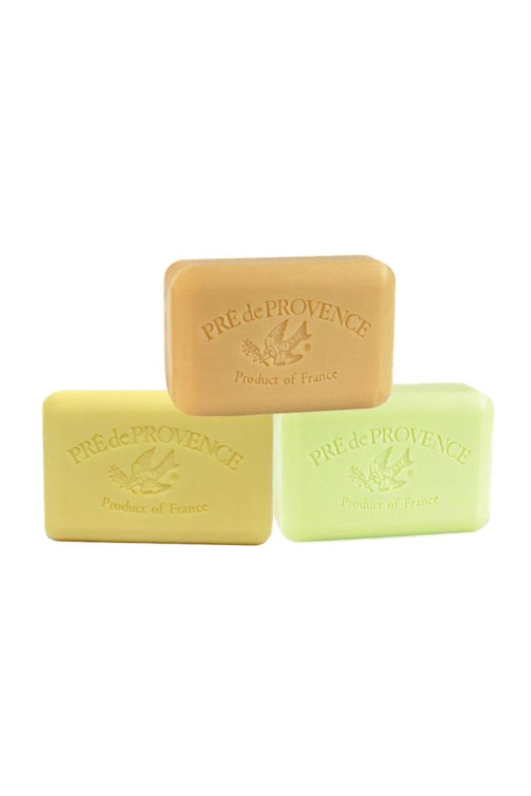 Djuna Provence Soap Assortment - Front Cropped Image