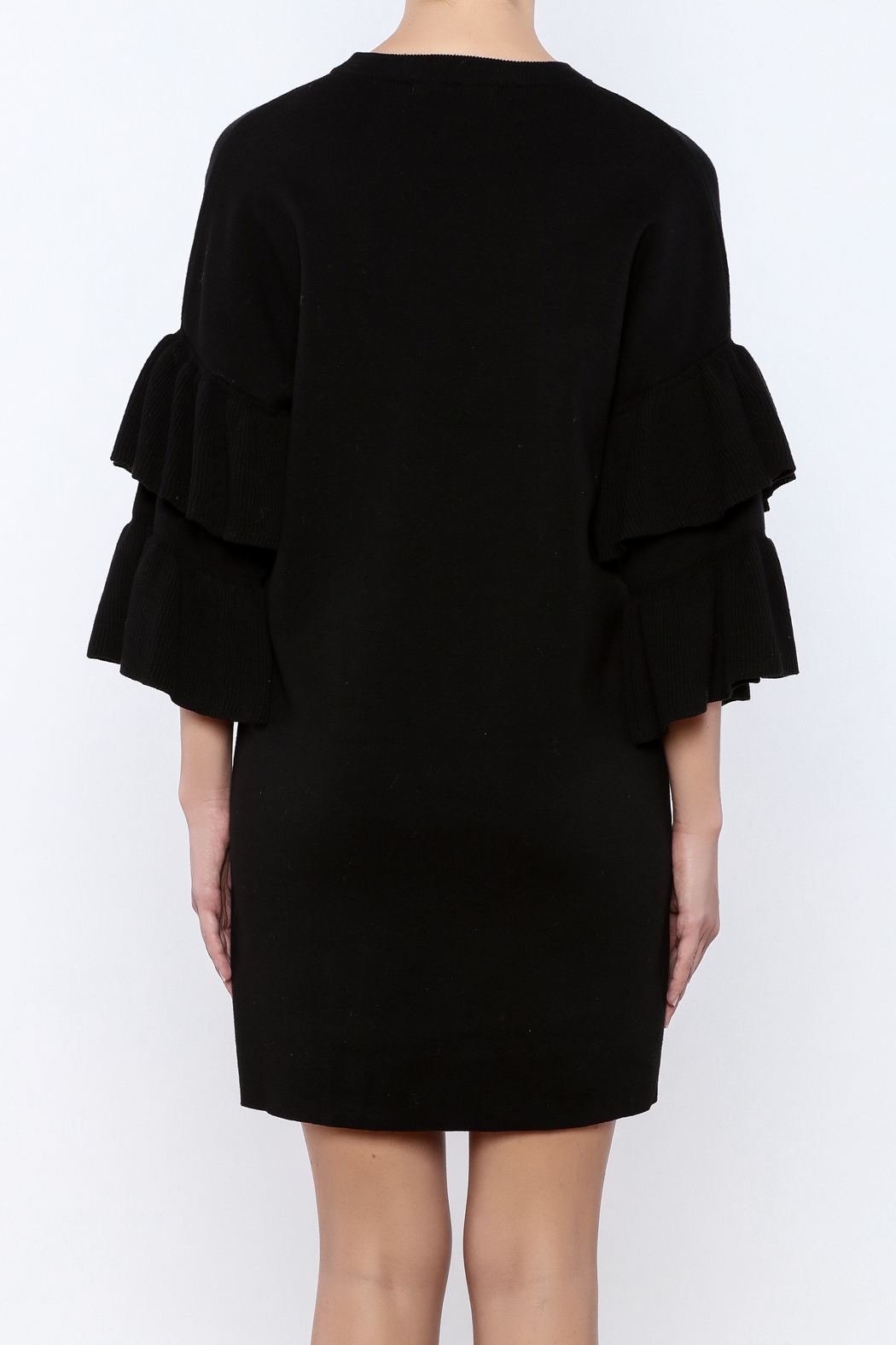 Do & Be Butterfly Sleeve Dress - Back Cropped Image