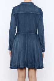Do & Be Denim Swing Dress - Back cropped