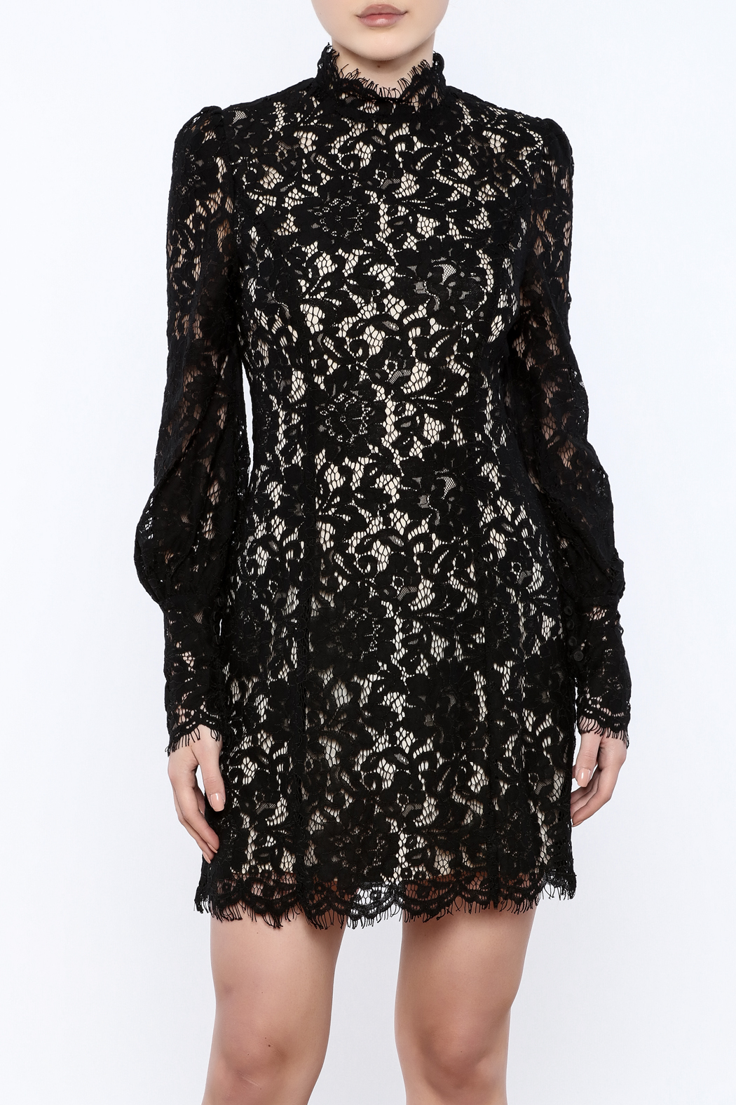 7eb52d3a0c Do   Be Lace Mock Neck Dress from New York by Dor L Dor — Shoptiques