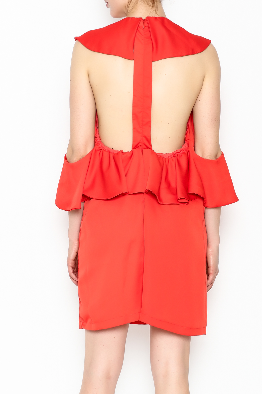 Do & Be Sexy Ruffle Dress - Back Cropped Image