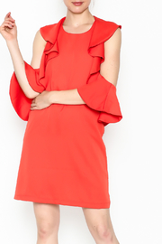 Do & Be Sexy Ruffle Dress - Front cropped
