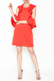 Do & Be Sexy Ruffle Dress - Side cropped