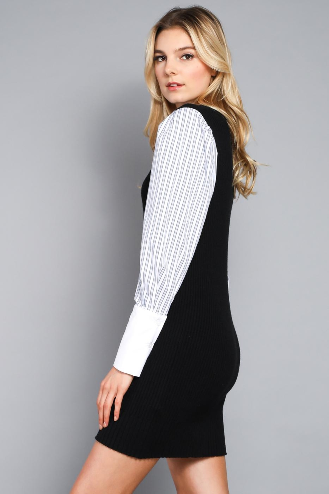 Do & Be Contrast Sleeve Dress - Front Full Image