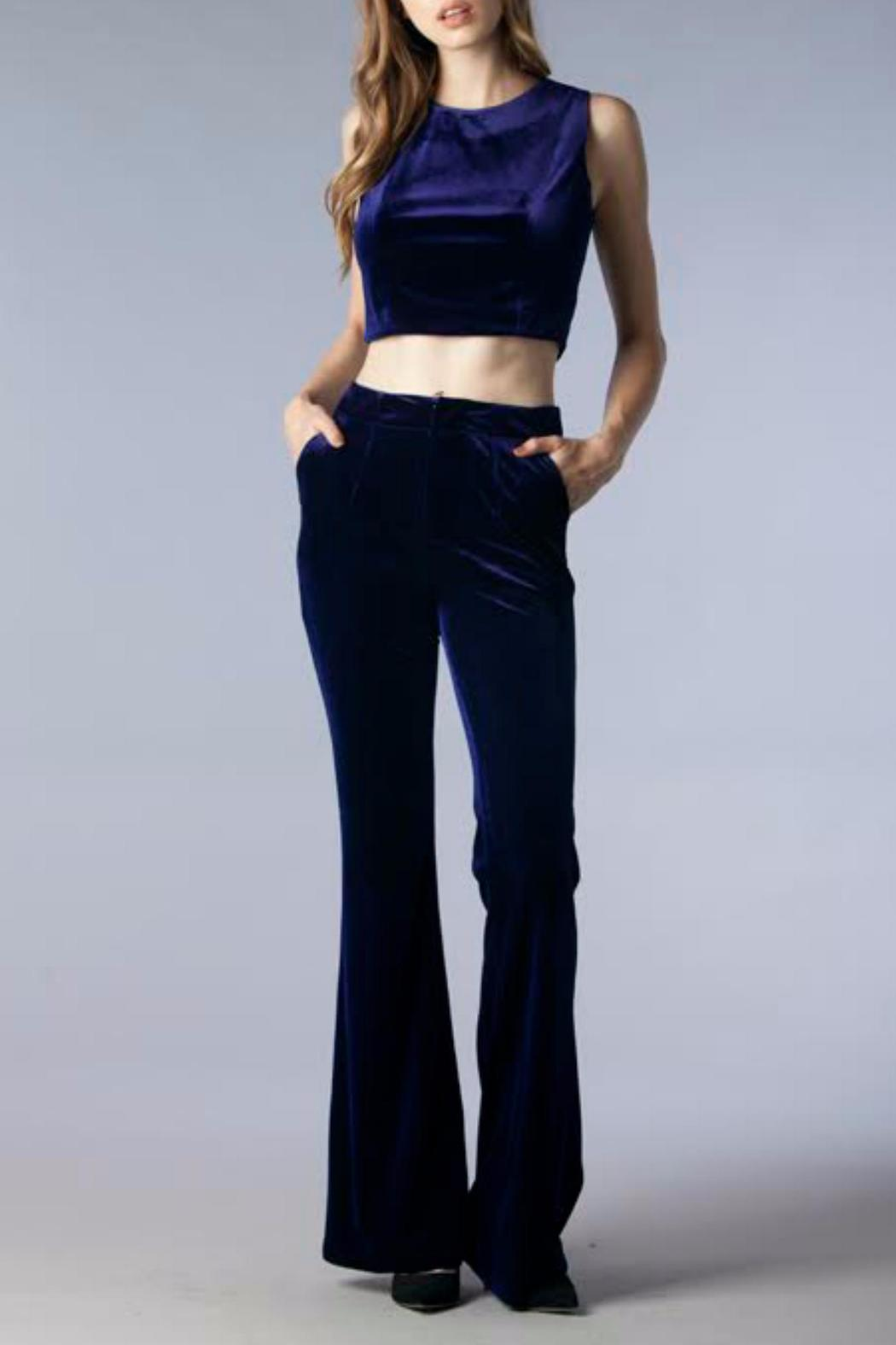 f89f52dd17967 Do   Be Cropped Velvet Top from Texas by Maya Star — Shoptiques