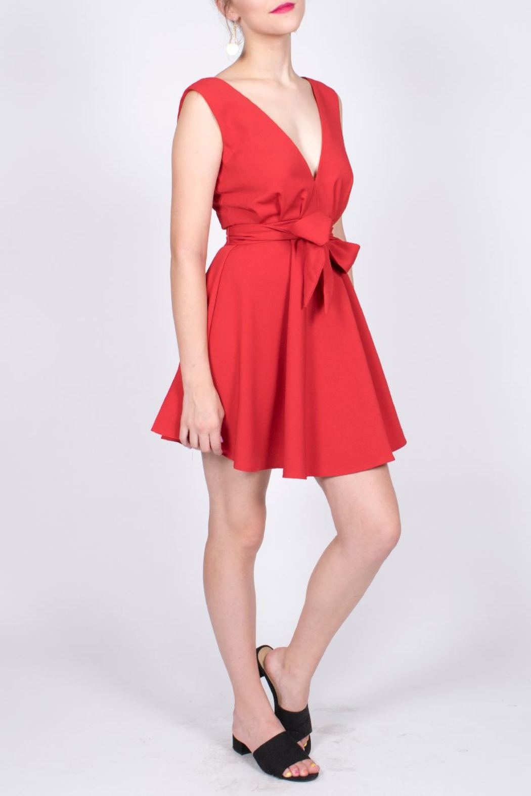 Do & Be Plunge Mini Dress - Front Cropped Image
