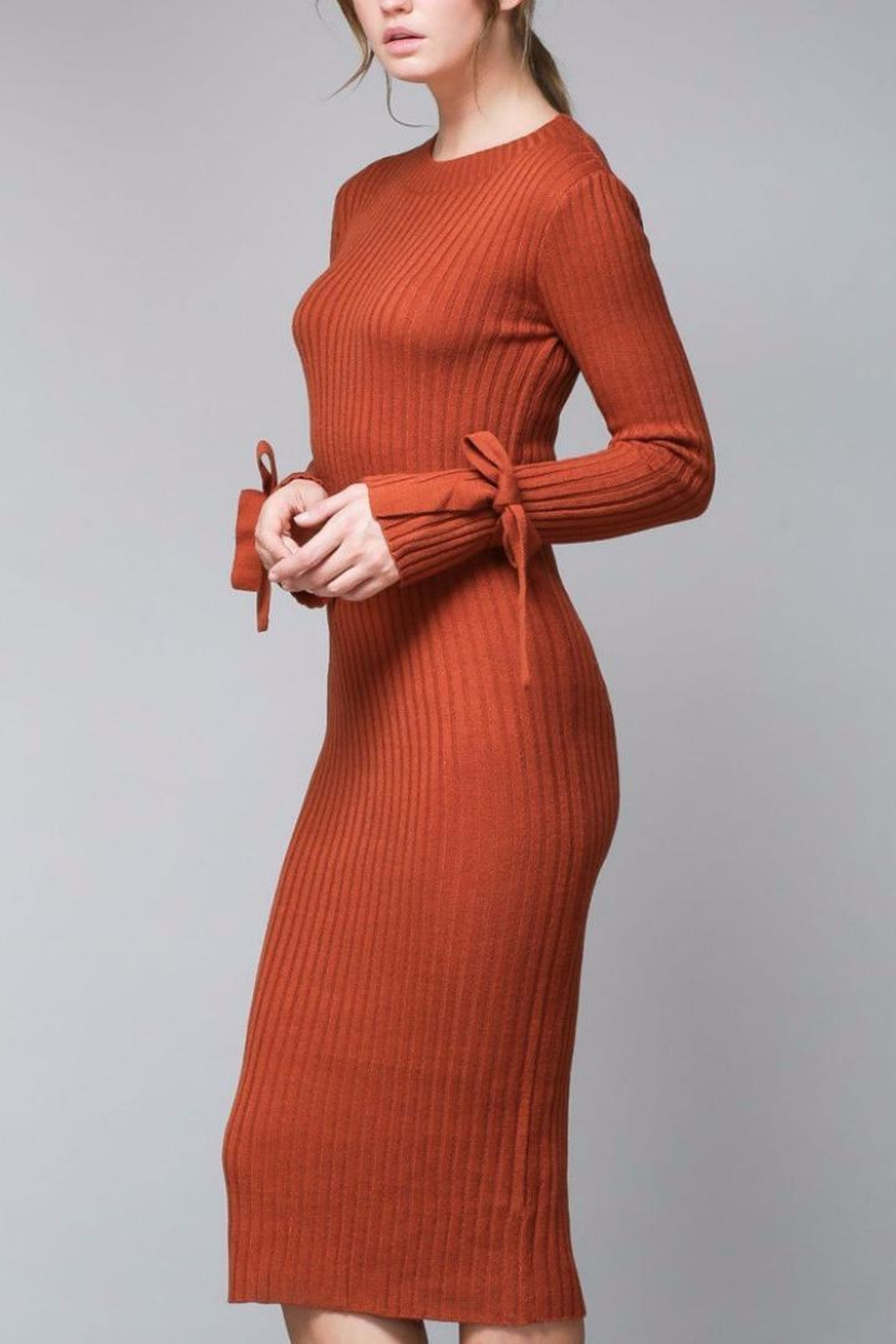 Do & Be Pumpkin Sweater Dress - Back Cropped Image