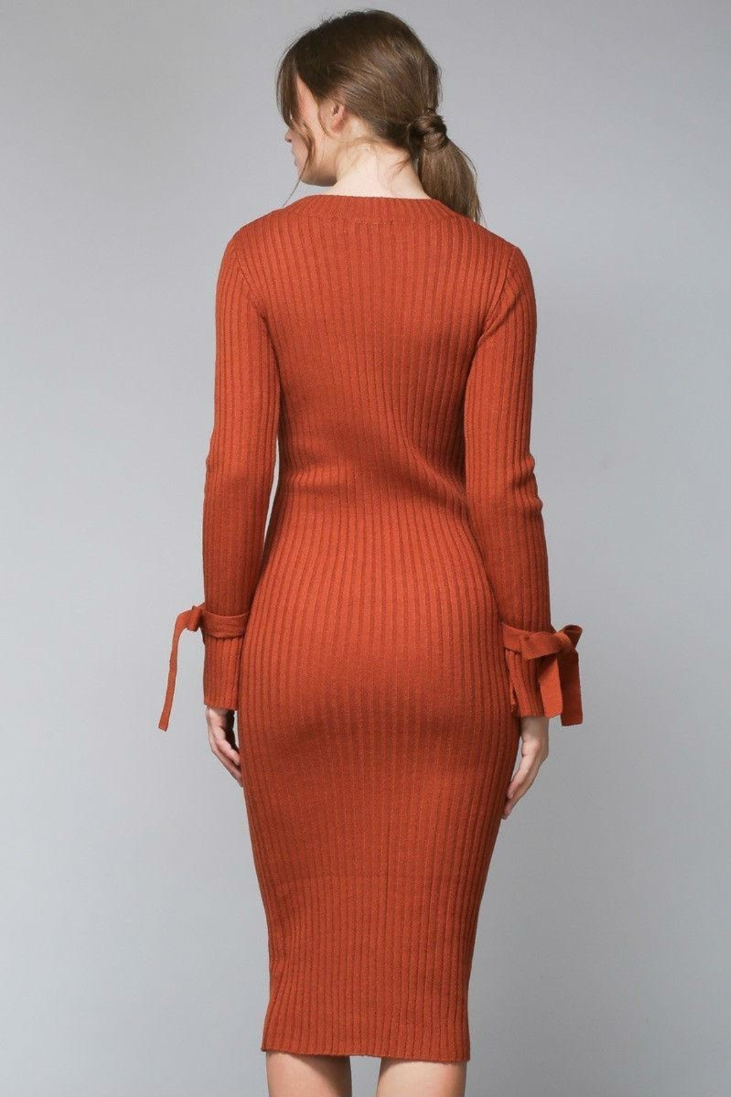 Do & Be Pumpkin Sweater Dress - Front Full Image