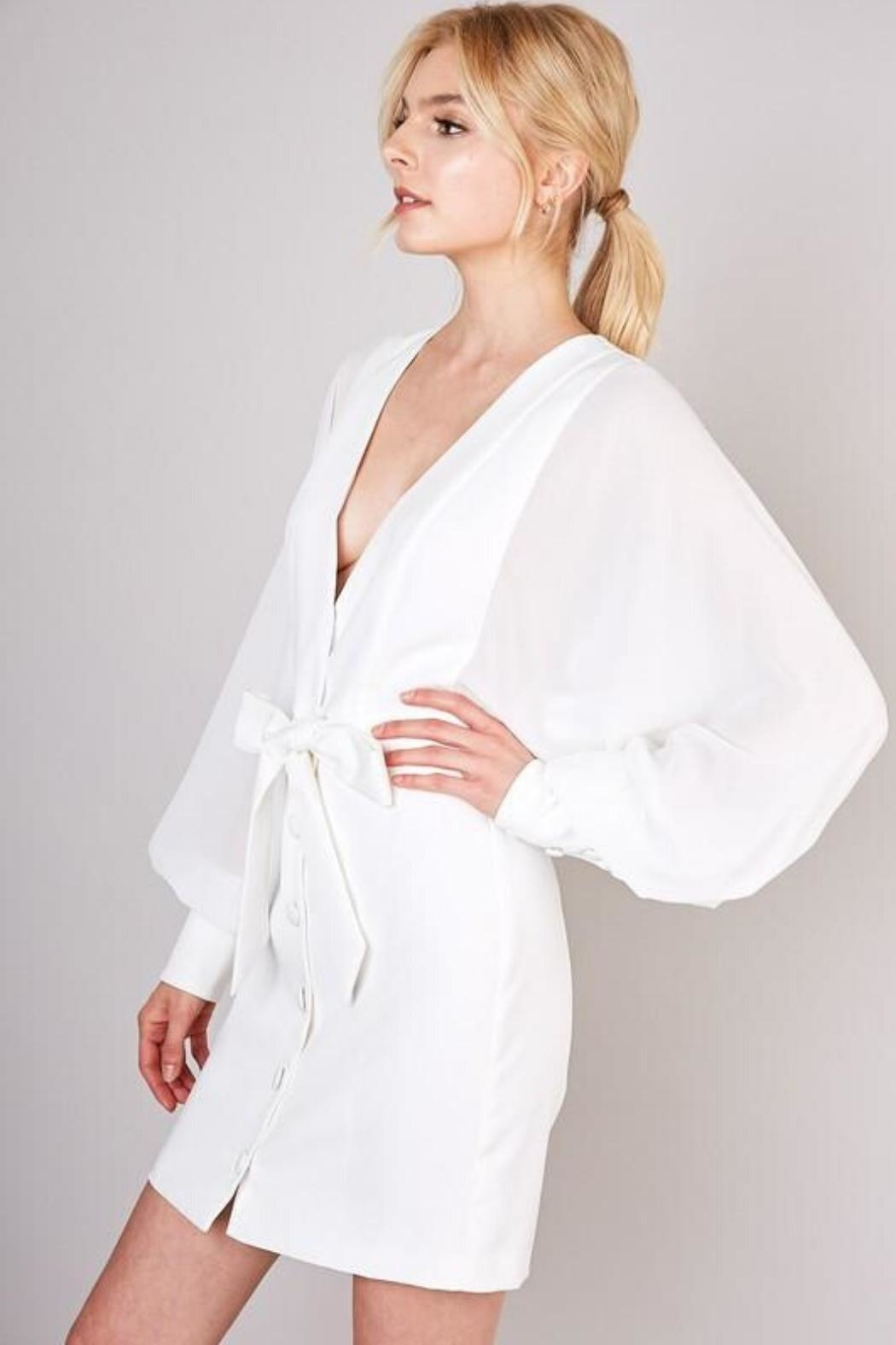 Do & Be Sheer Balloon-Sleeve Dress - Back Cropped Image