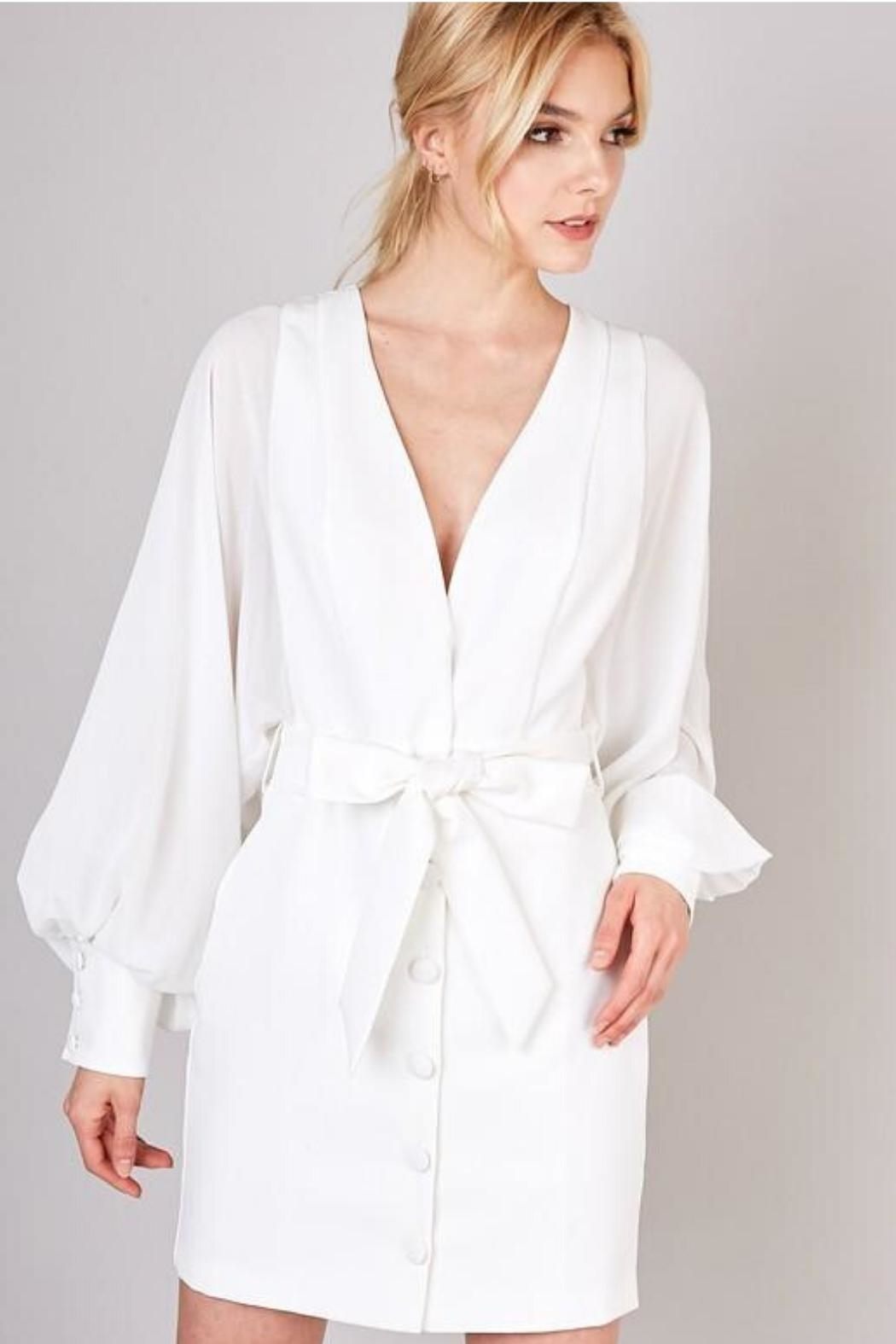 Do & Be Sheer Balloon-Sleeve Dress - Front Cropped Image