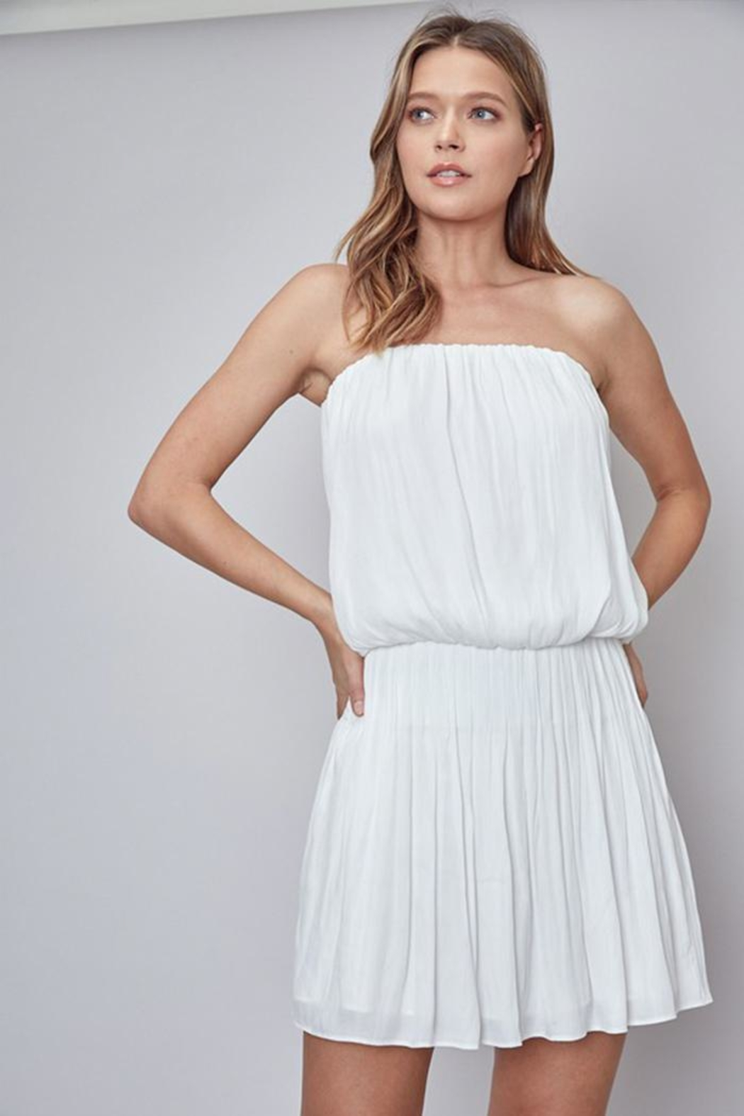 Do & Be Strapless Dress - Front Cropped Image