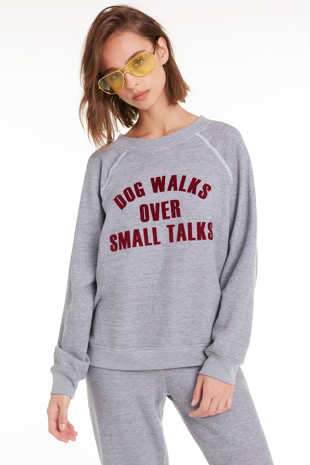 Wildfox Dog Walks Sommers Sweatshirt - Front Cropped Image