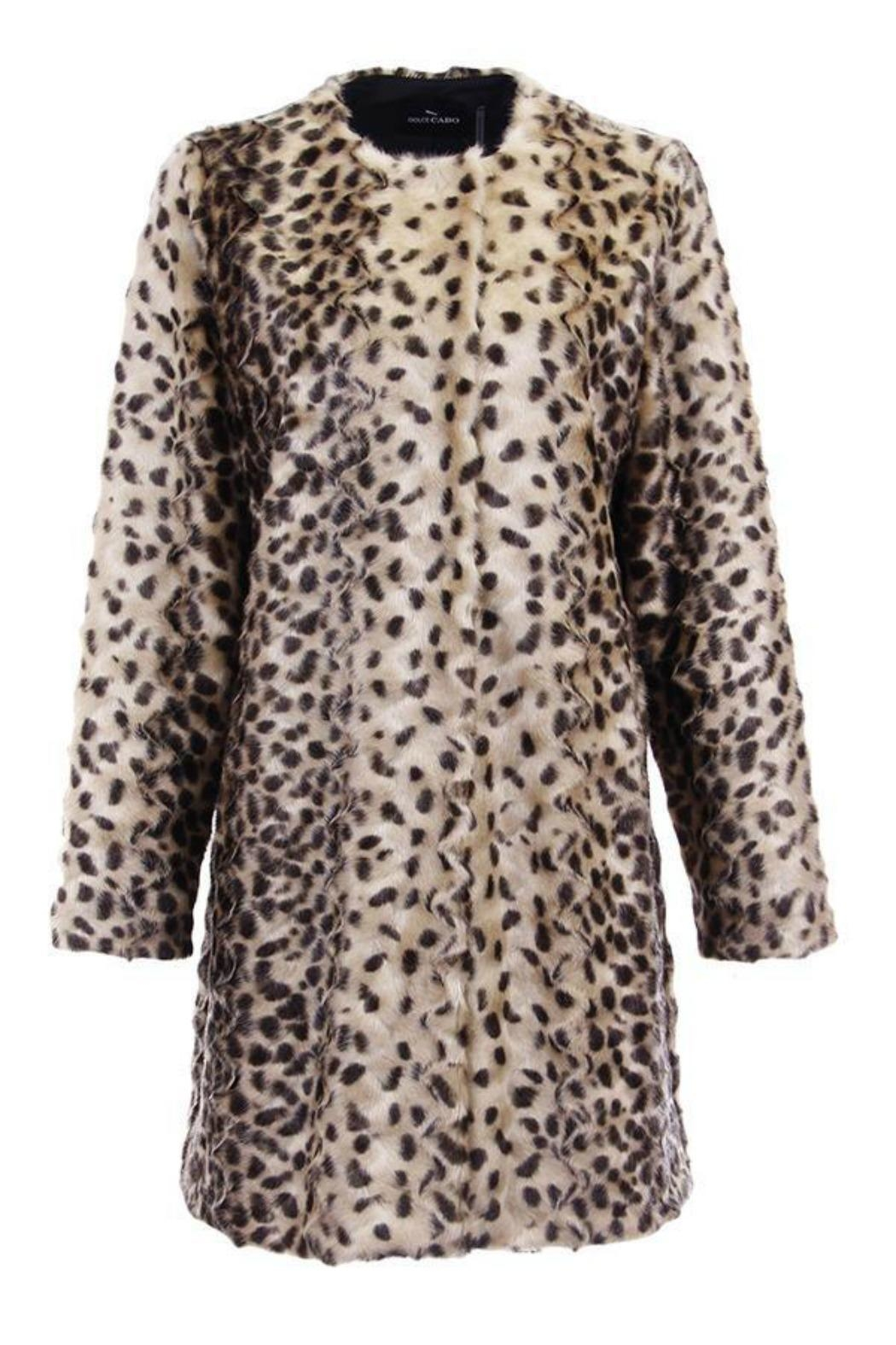 Dolce Cabo Faux Fur Coat - Main Image