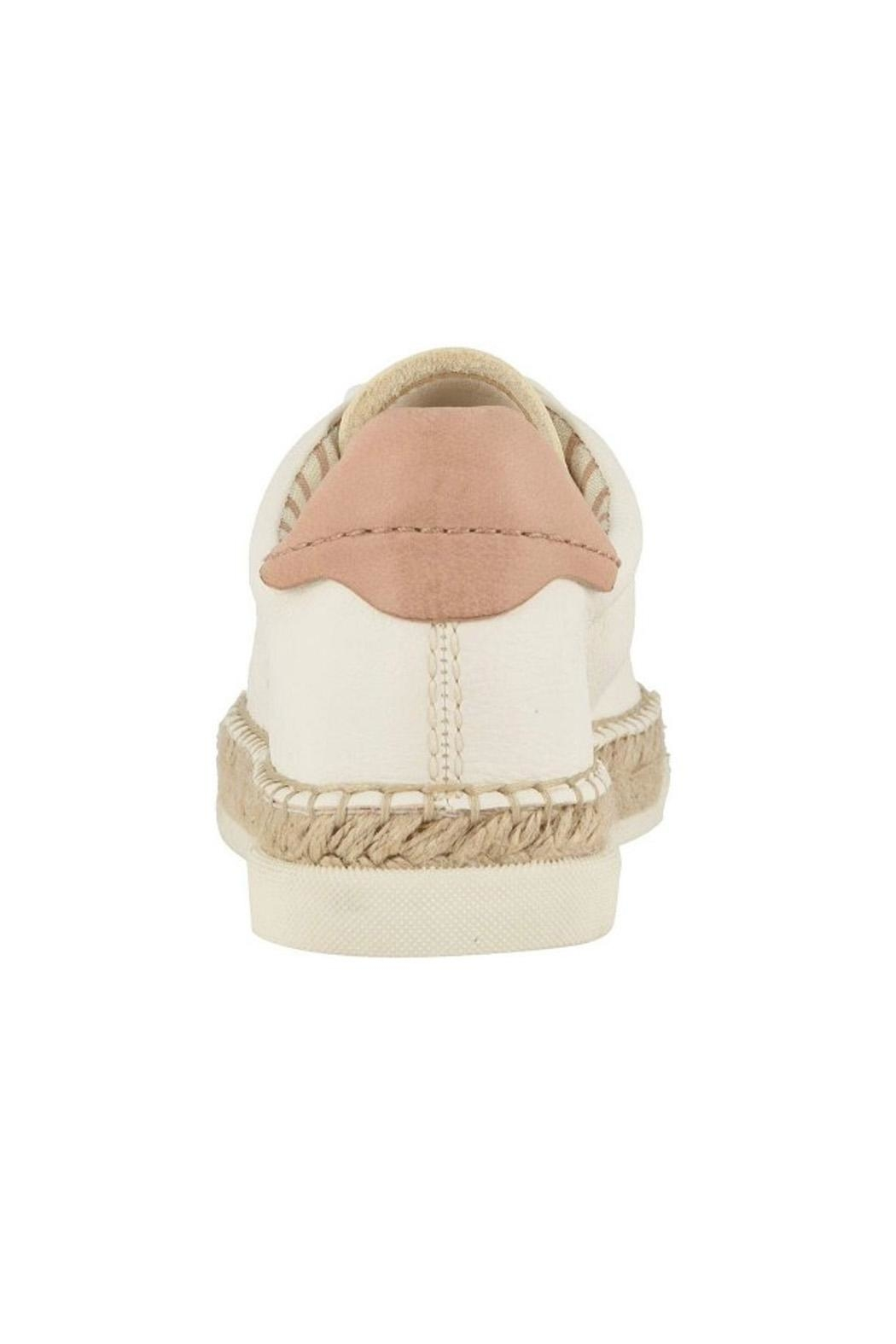 Dolce Vita Ivory Leather Sneakers - Front Full Image