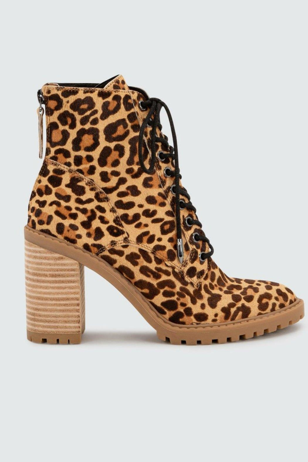 Dolce Vita Norma Leopard Heeled-Bootie - Front Full Image