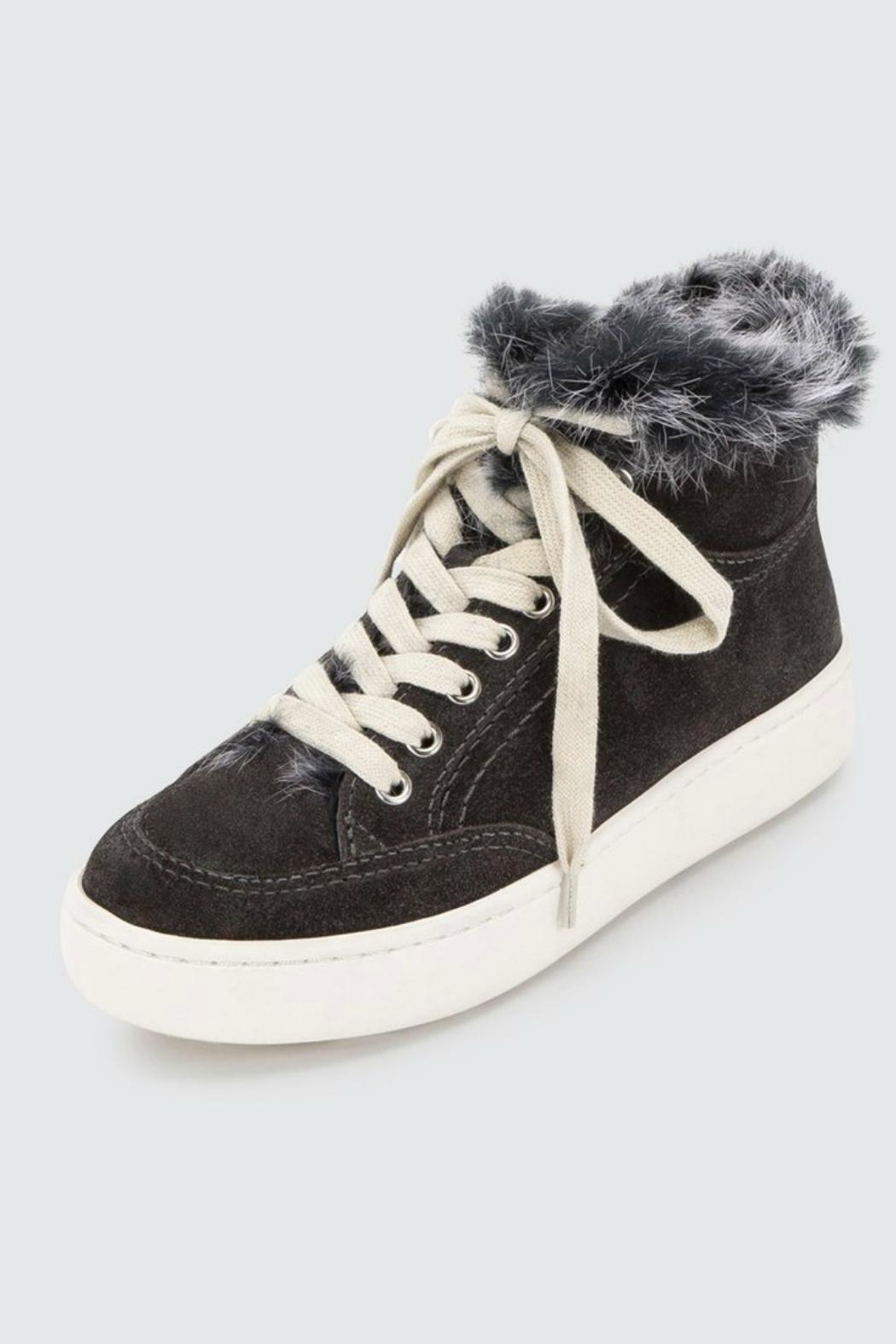 Dolce Vita Trudie Sneakers - Back Cropped Image