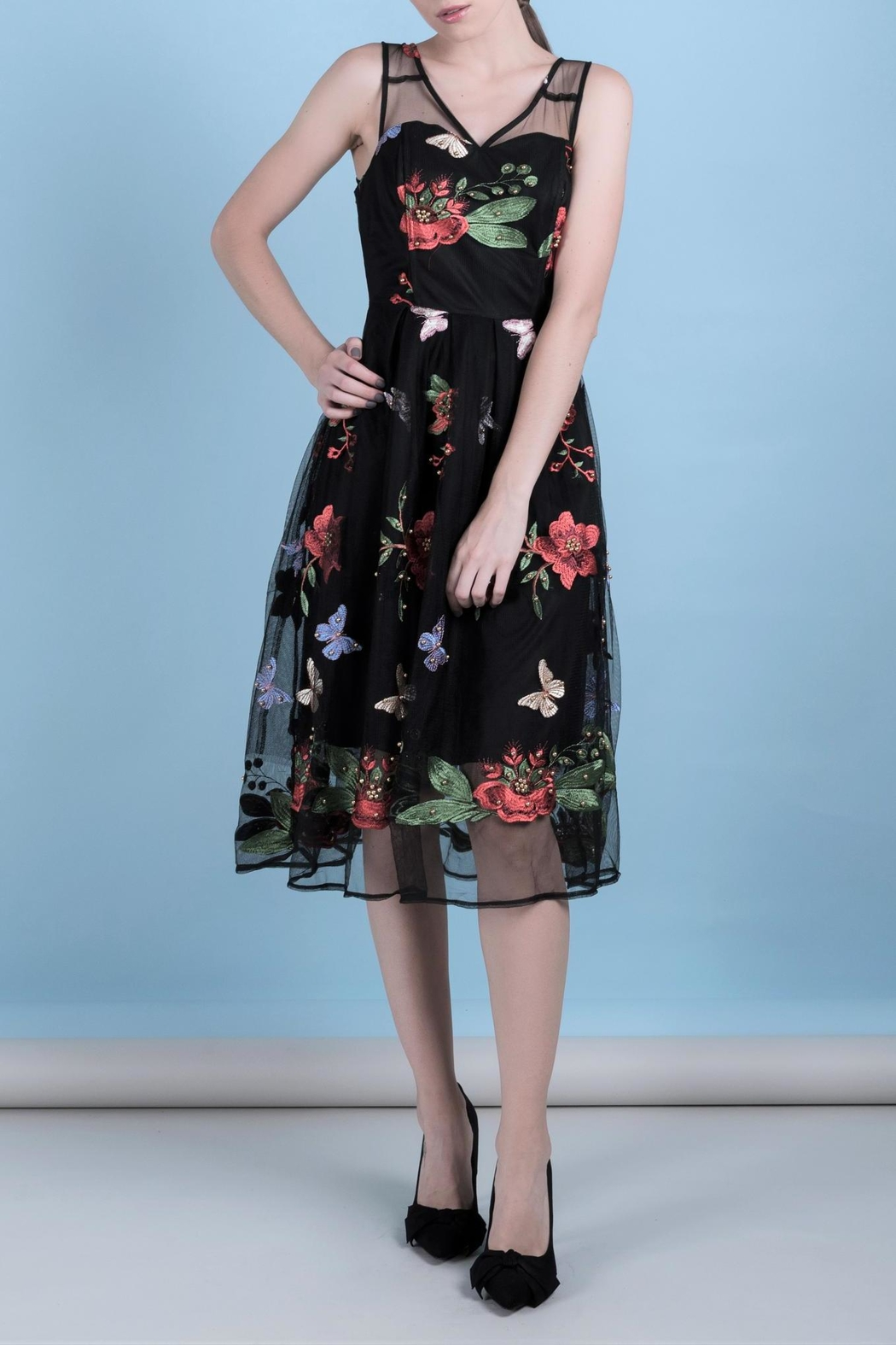 DOLCICIMO Embroidered Organza Dress - Main Image