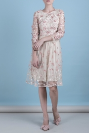 DOLCICIMO Organza Pink Dress - Front full body