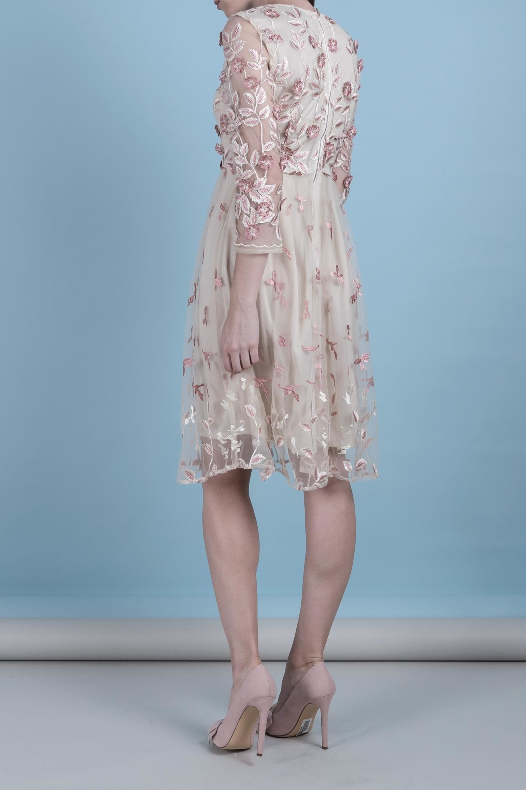 DOLCICIMO Organza Pink Dress - Side Cropped Image