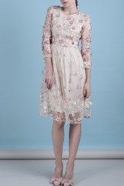 DOLCICIMO Organza Pink Dress - Front cropped
