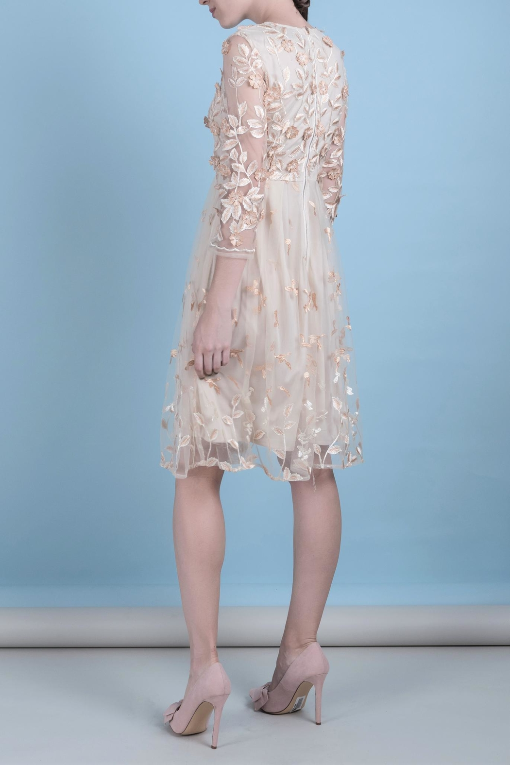 DOLCICIMO Organza Sweet Dress - Front Full Image