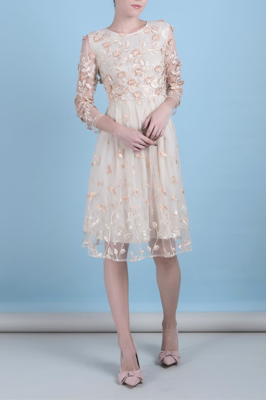 DOLCICIMO Organza Sweet Dress - Front Cropped Image
