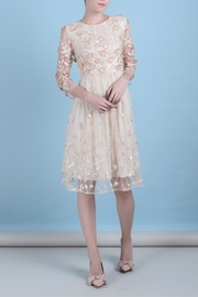 DOLCICIMO Organza Sweet Dress - Front cropped