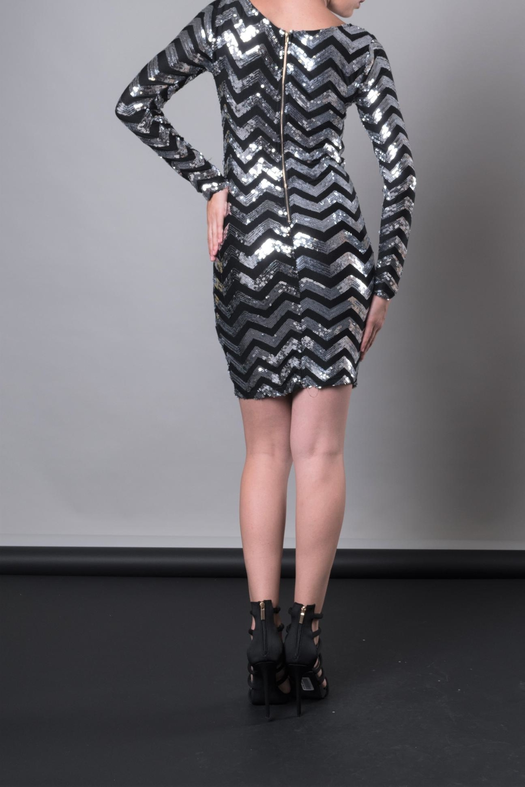 DOLCICIMO Silver Sequin Dress - Side Cropped Image