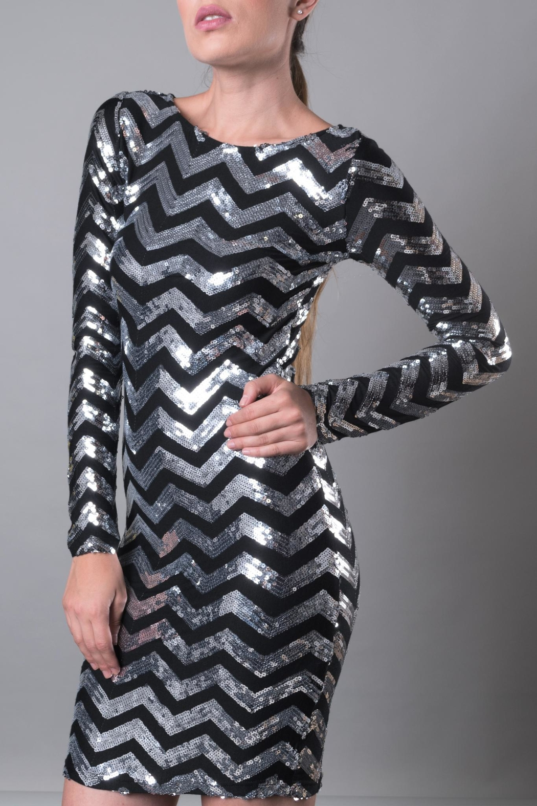 DOLCICIMO Silver Sequin Dress - Main Image