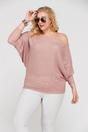 Janette Plus Dolman Sleeve Top - Front full body
