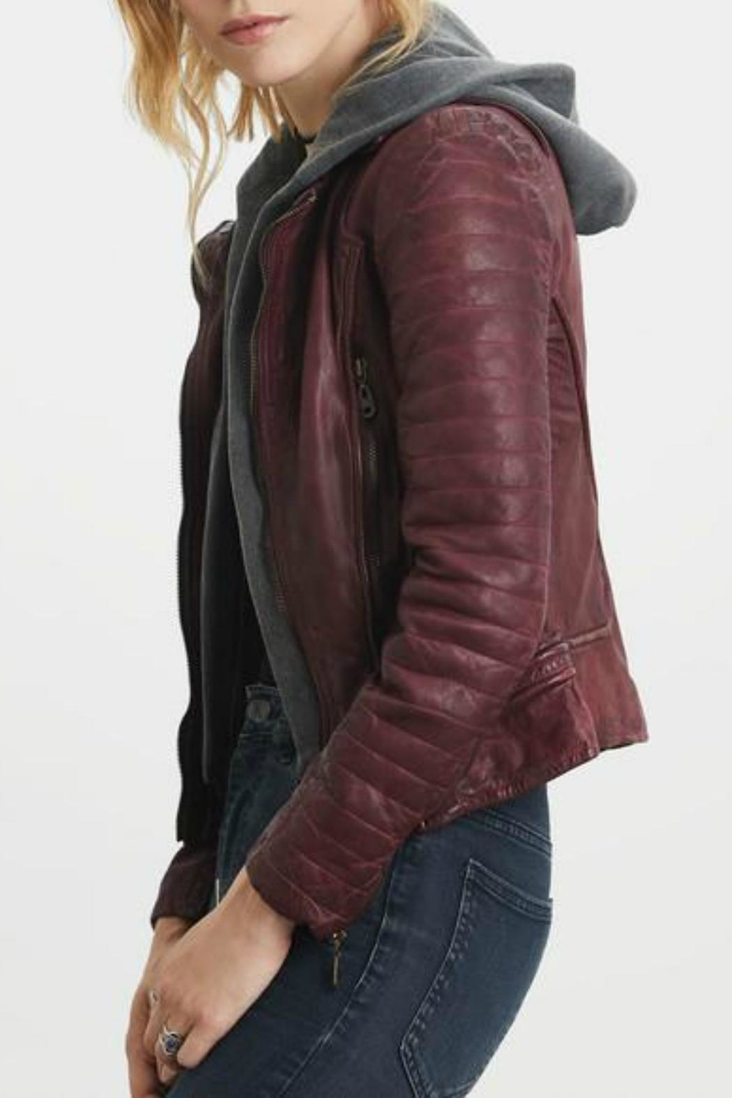 Doma Leather - Front Full Image