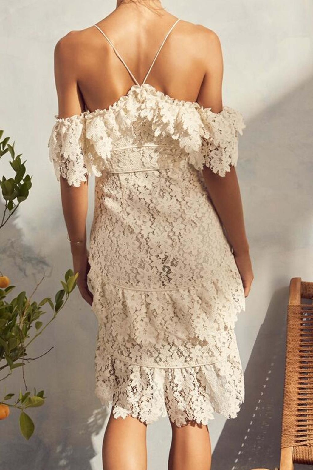 Saylor Donna Lace Dress - Front Full Image