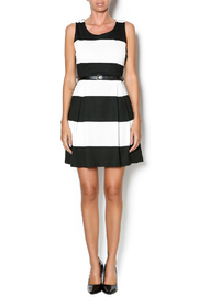 Double Zero Fit And Flare Dress - Front full body