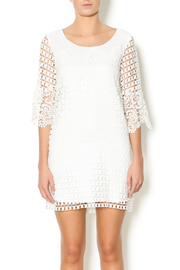Double Zero Lace Dress - Front cropped