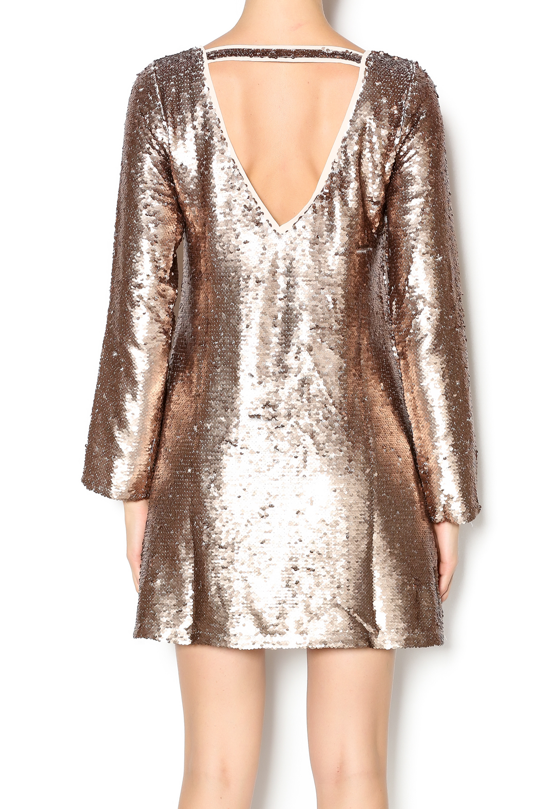 Double Zero Long Sleeve Sequin Dress - Back Cropped Image