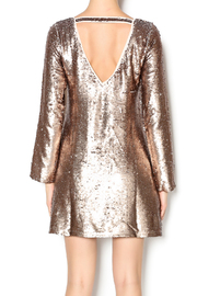 Double Zero Long Sleeve Sequin Dress - Back cropped