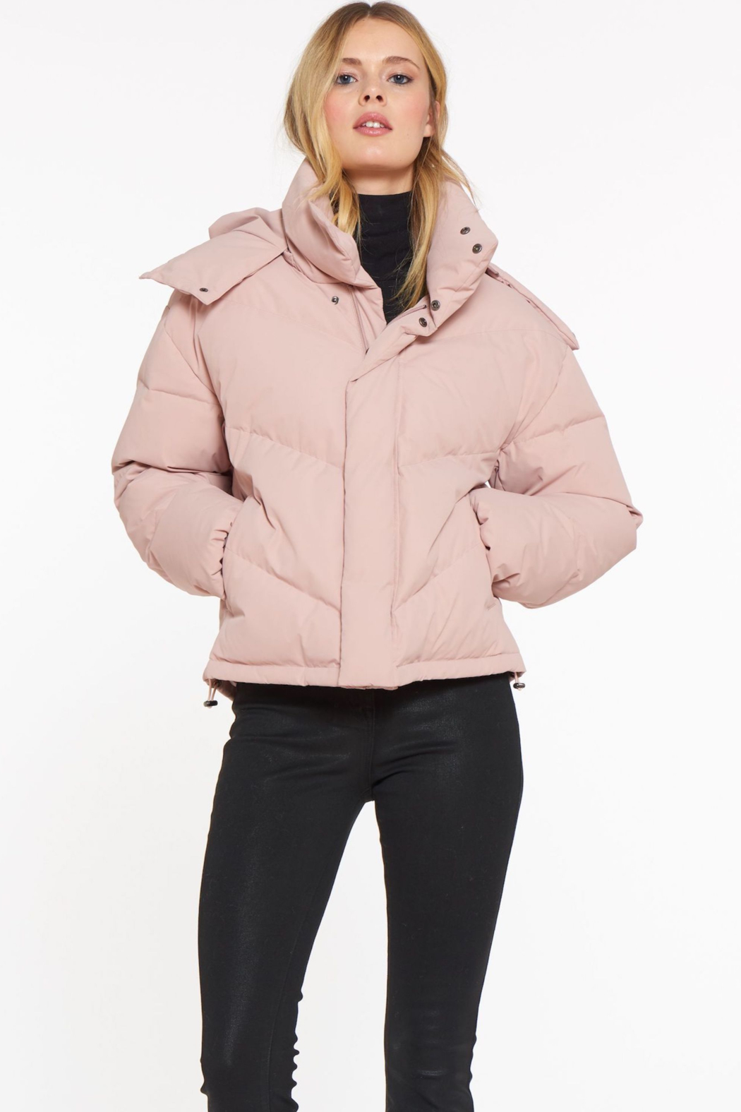 Sanctuary Down Puffer Jacket - Back Cropped Image
