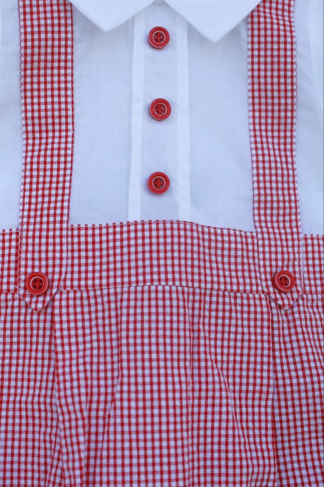 Dr. Kid Red/white Gingham One-Piece - Front Full Image