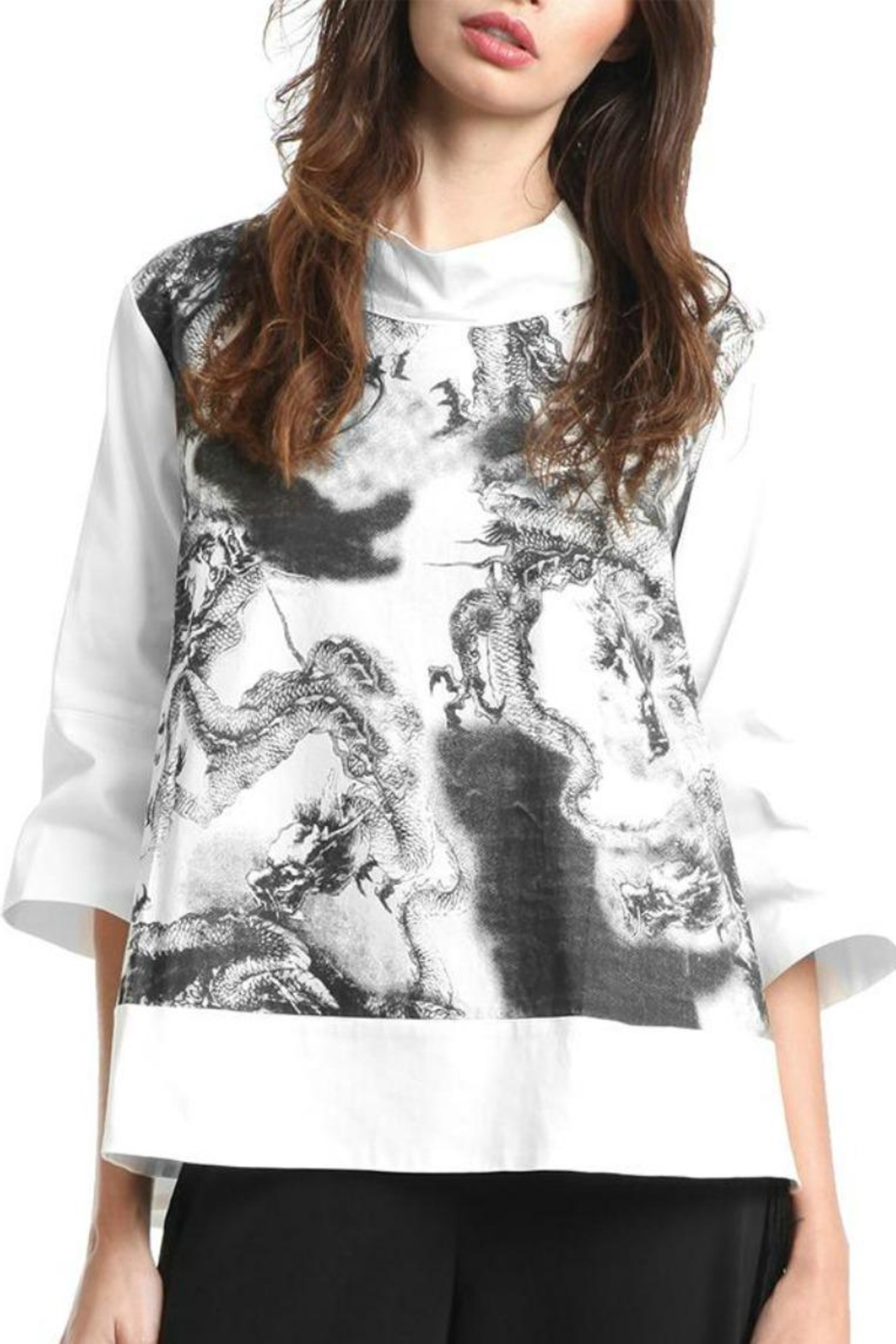 Gracia Dragon Printed Top - Front Cropped Image