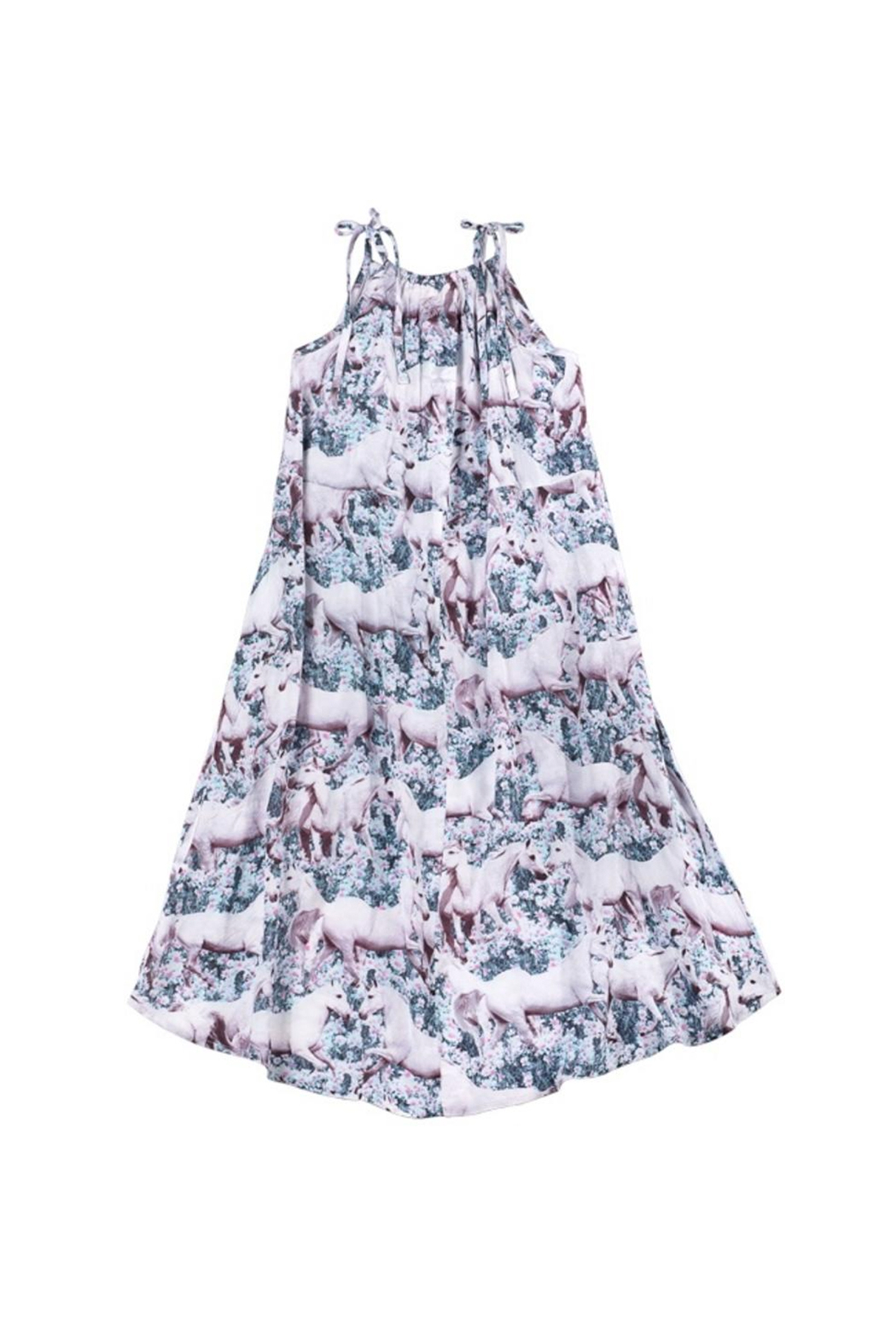 Paper Wings Dream Field Horse Maxi Dress - Front Full Image