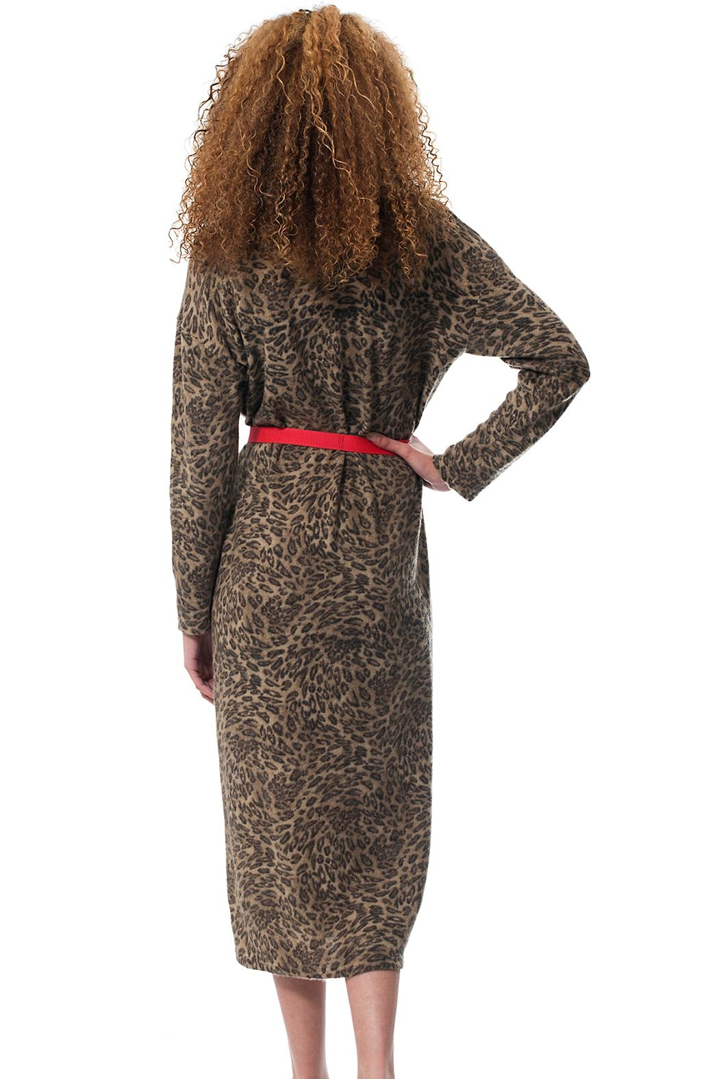 Gypsetters Dress Leopard - Side Cropped Image