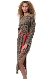 Gypsetters Dress Leopard - Front cropped