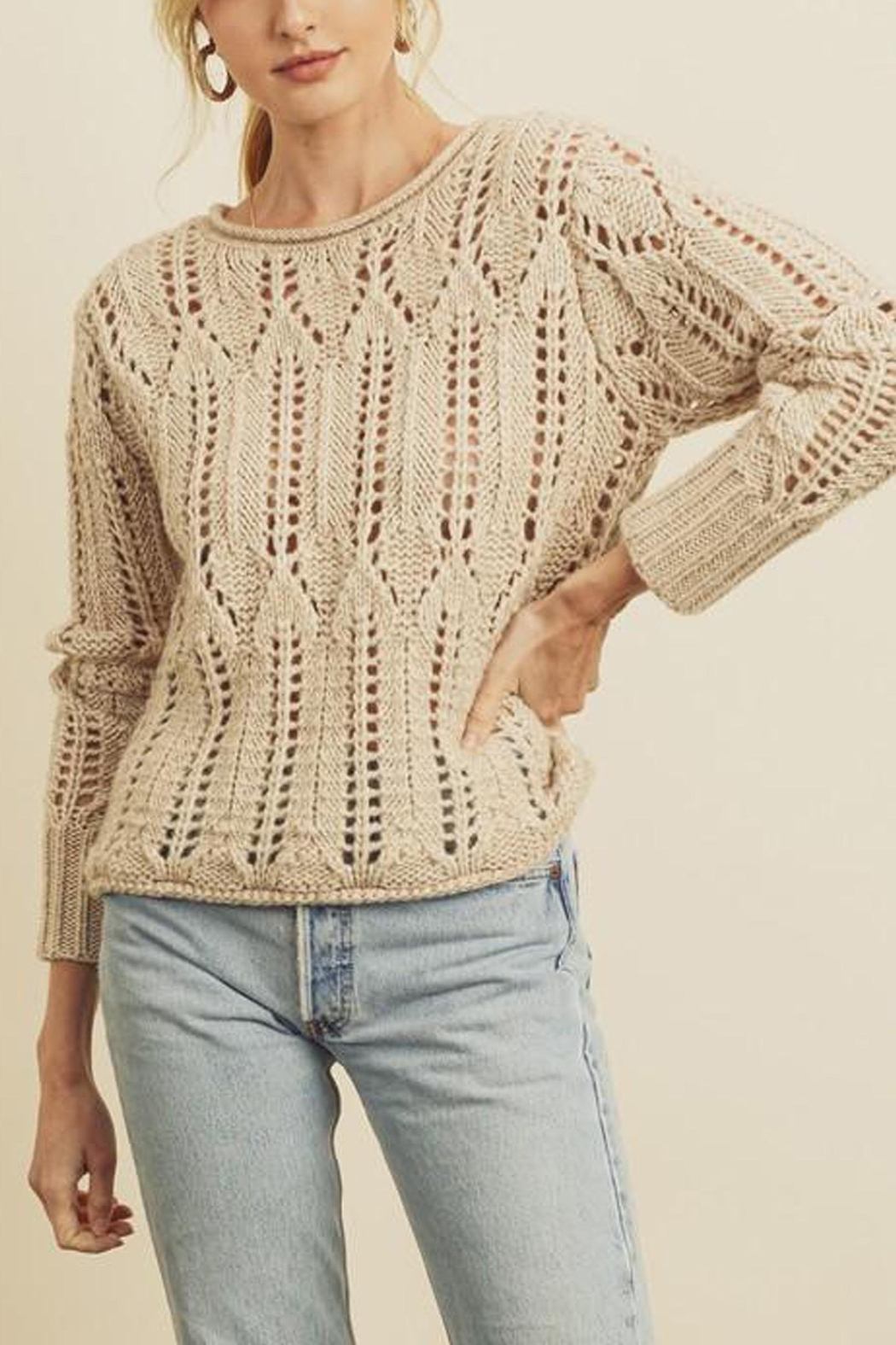 dress forum Open-Knit Pullover Sweater - Front Full Image