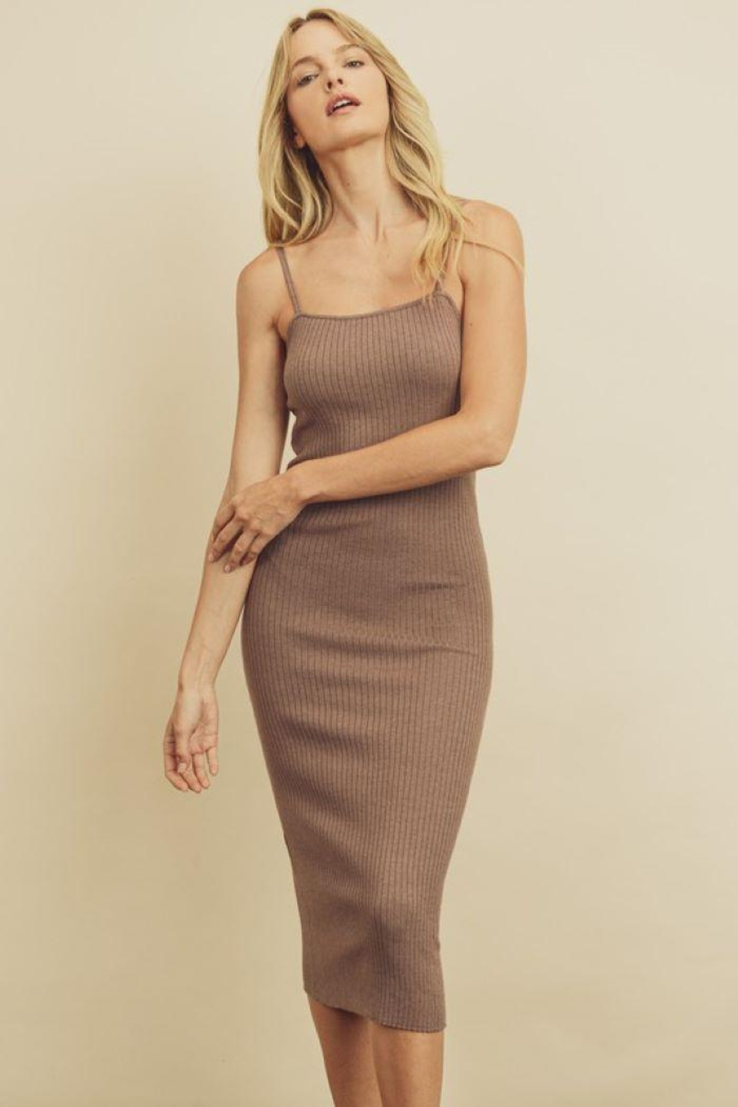 dress forum Ribbed Bodycon Dress - Front Cropped Image