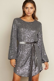 dress forum Sequin Dress - Front cropped